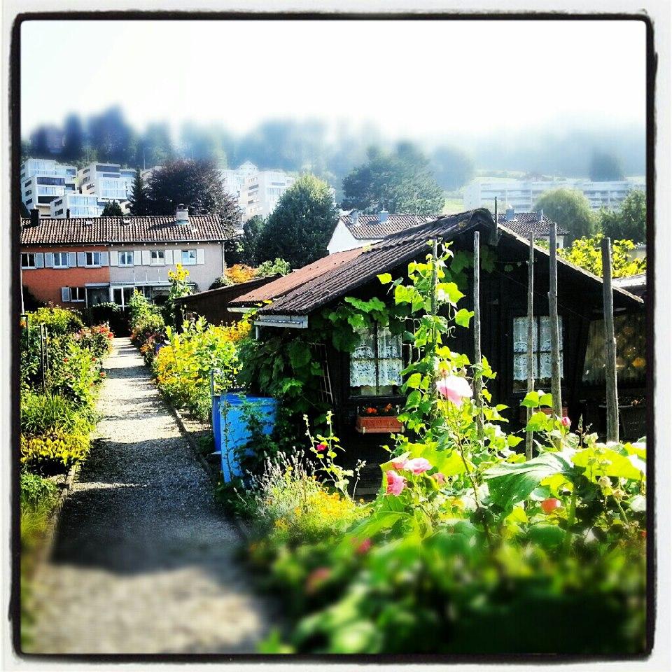 Leserbrief 5. September 2012: Familiengärten sind grüne Oasen