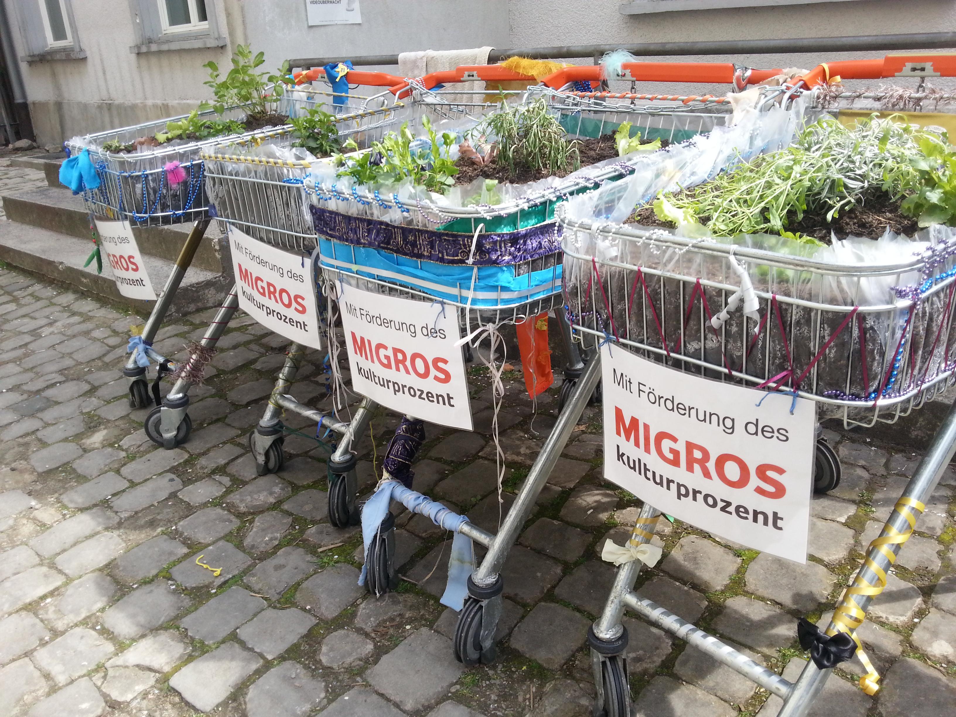 Leserbrief: Gärtnern in der Stadt